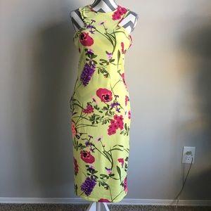 Beautiful Floral print Dress, Midi, US SZ14