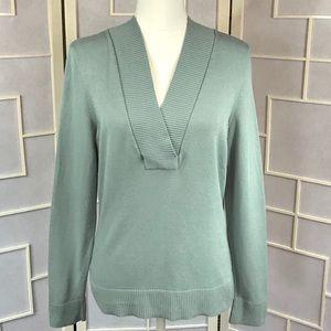 💥 Ann Taylor Petites v neck sweater