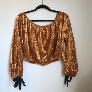 Gold Velvet Off the shoulder crop top