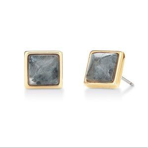 Wishing Stone earrings with Larvikite