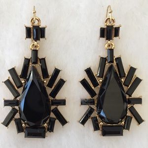 Stunning Jet Black Drop Earrings
