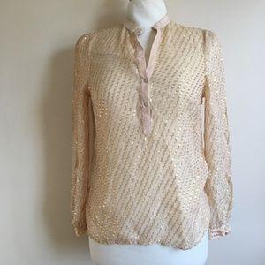 Zara Woman Nude Gold Thread Long Sleeve Sheer Top
