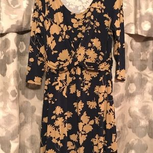 Boden dress.  Gorgeous navy and tan.