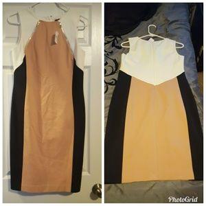 Ann Taylor size 4 Dress NWT