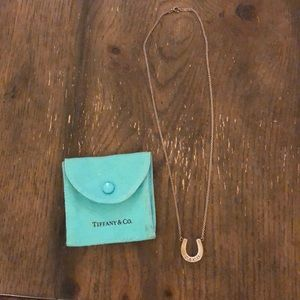 Tiffany & Co horseshoe necklace
