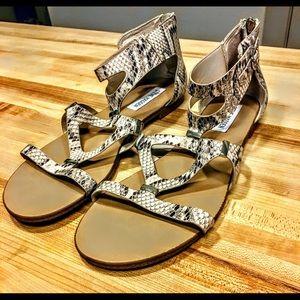 Steve Madden Comly Sandals