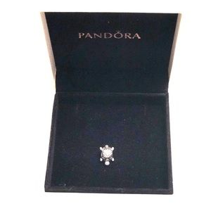 Retired Pandora Turtle Charm
