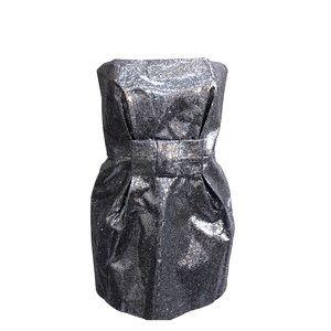 Silver Shimmer Kira Plastina Strapless Mini Dress