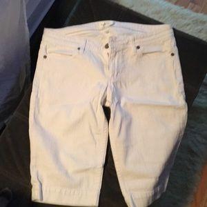 White denim Habitual shorts