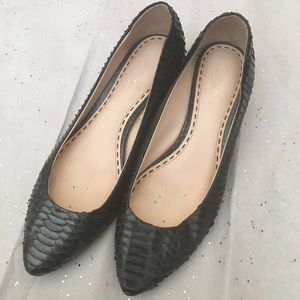 Coach Shoes - Coach black snakeskin kitten heels