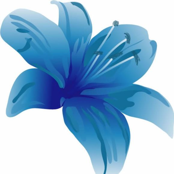 blue_lilly