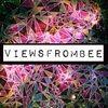 viewsfrombee