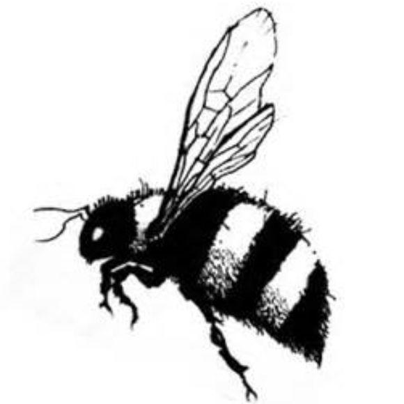 buzzwear