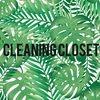 cleanin_closet
