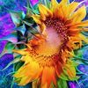 goldensunflower