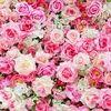 bloomingrose2